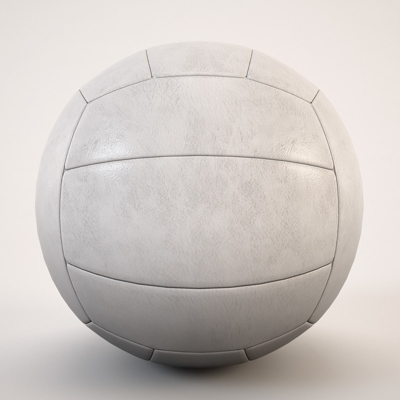 max ball volleyball white
