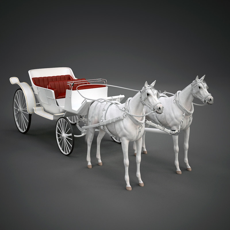white landau horse max