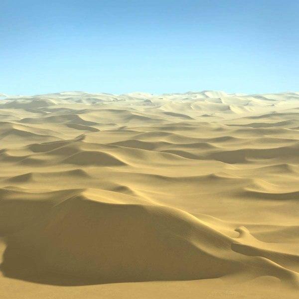 3d sahara desert scene terrain landscape model