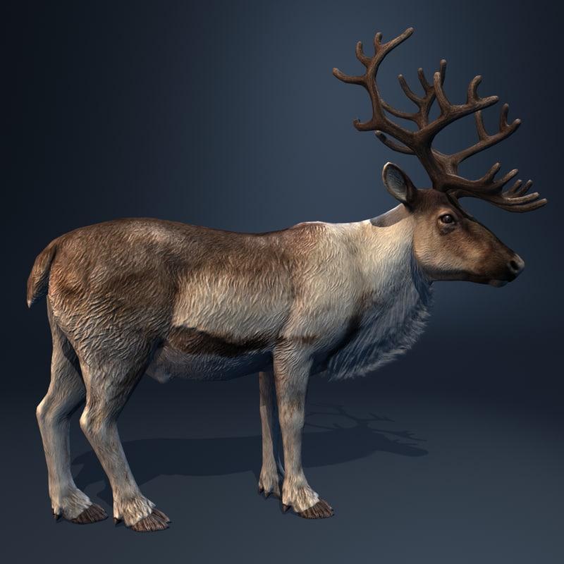 rigged reindeer deer 3d model