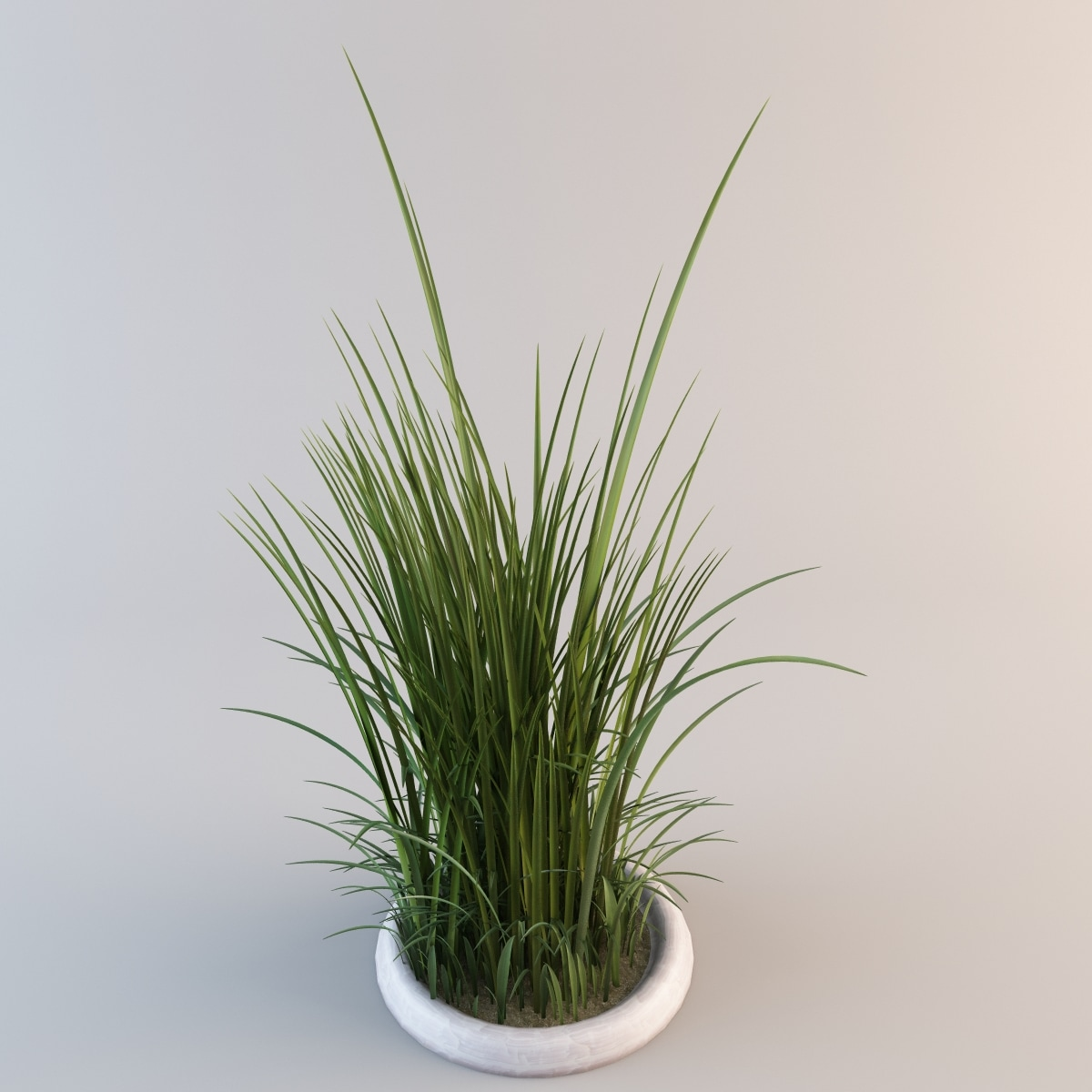 c4d grass 2