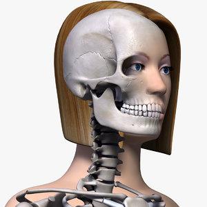 anatomically female body skeleton arm 3d model