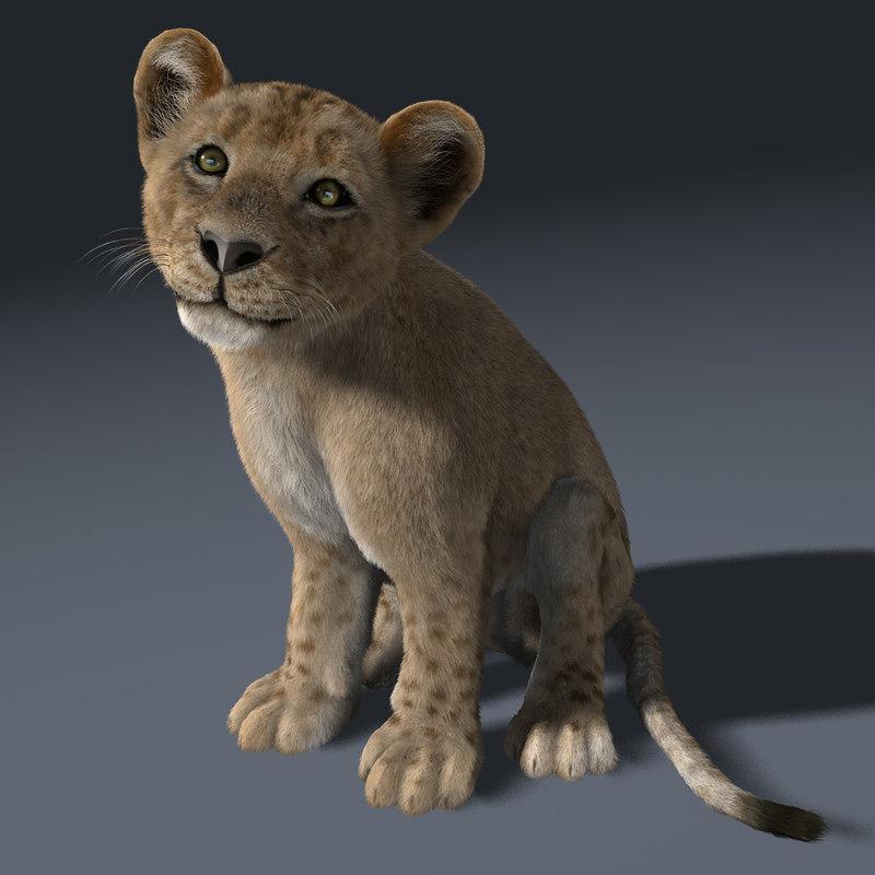 lion cub rigged fur 3d ma