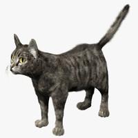 cat fur 3d max