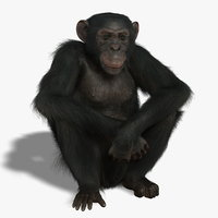 Chimp (RIGGED) (FUR)