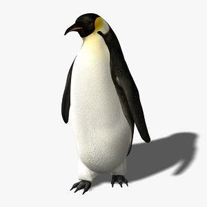 3d penguin rigged model
