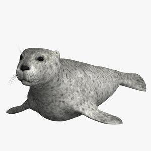 harbor sea seal 3d max