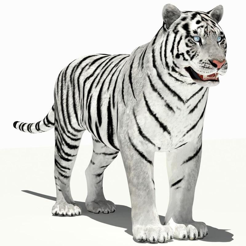 amur tiger white 3d 3ds