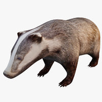 3ds european badger