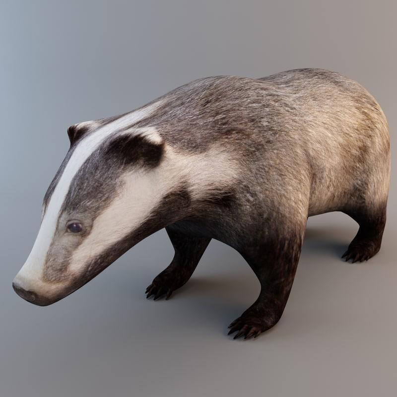 3ds european badger