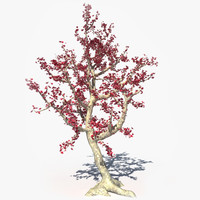 3dsmax realistic tree flowers