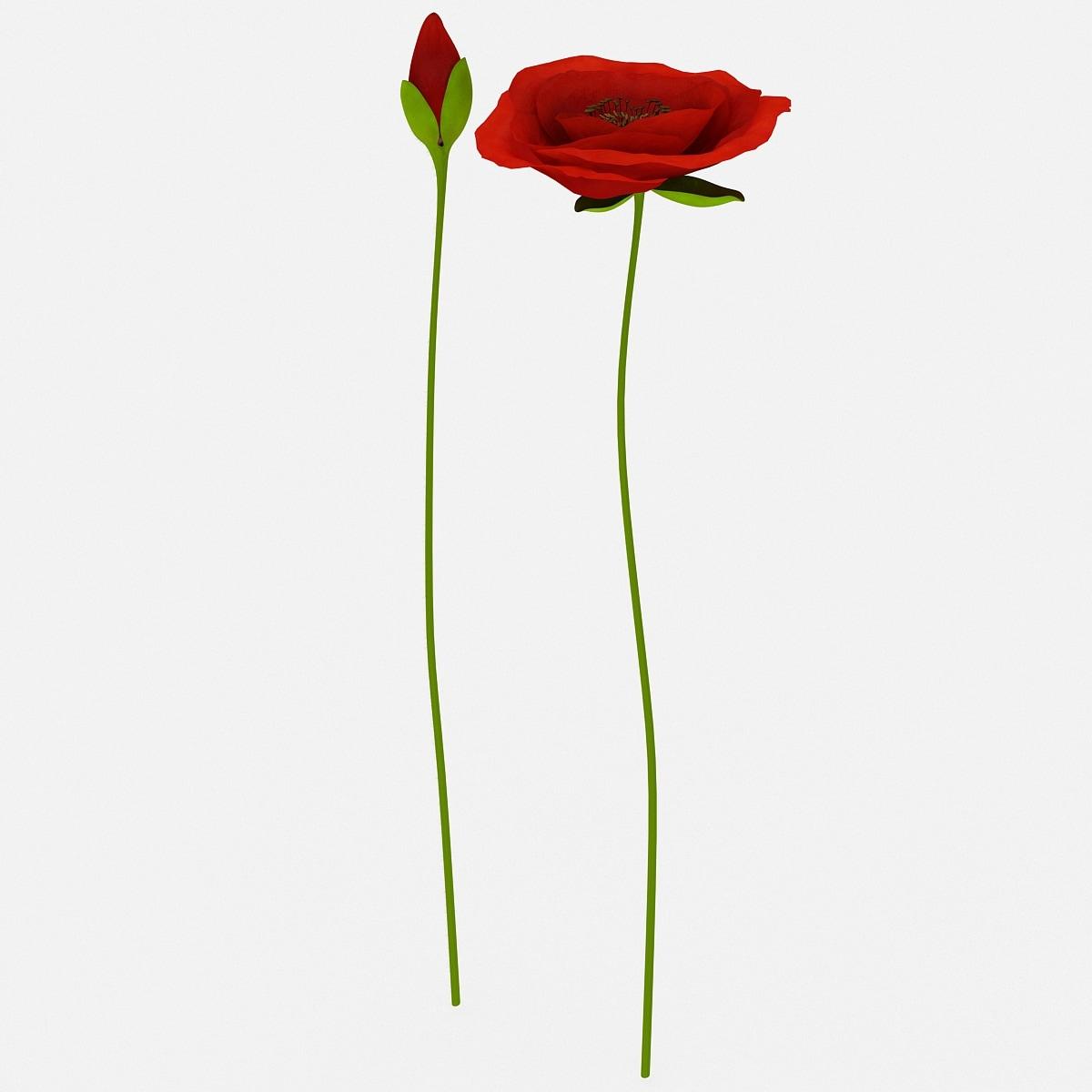 3d model red poppies set flower