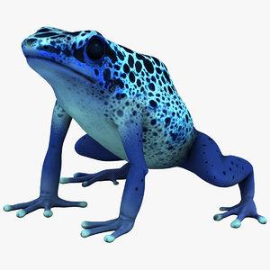 max poison dart frog