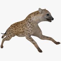 hyena pose 2 3d c4d