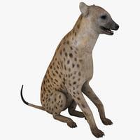 max hyena pose 3