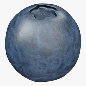 blueberry fruit 3d 3ds