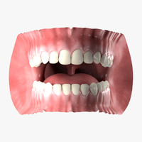 3ds max human mouth