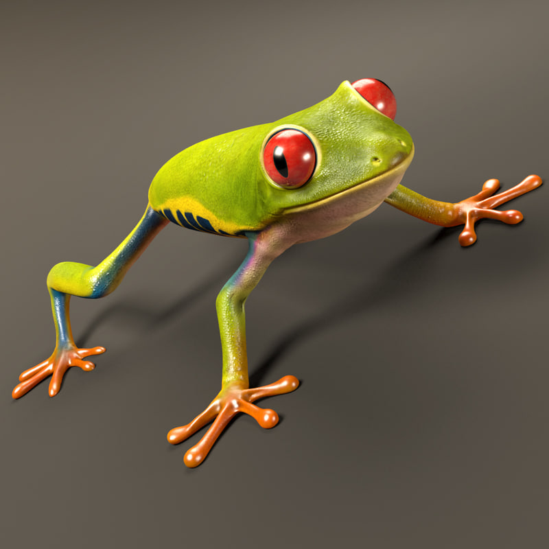 red-eyed tree frog eye 3d max
