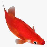 Swordtail Female (RIGGED)