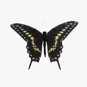 black swallowtail butterfly animation 3d obj