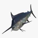 marlin 3D models
