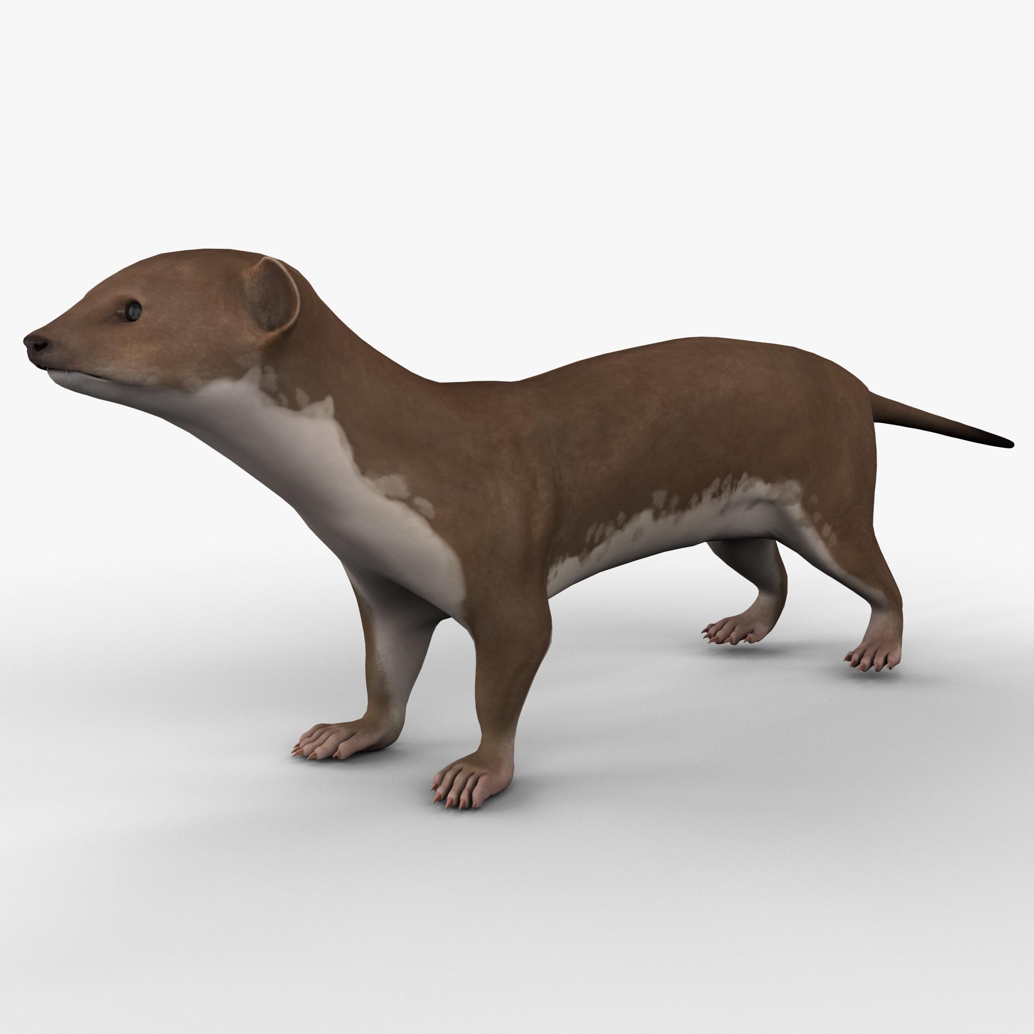 weasel 3d max
