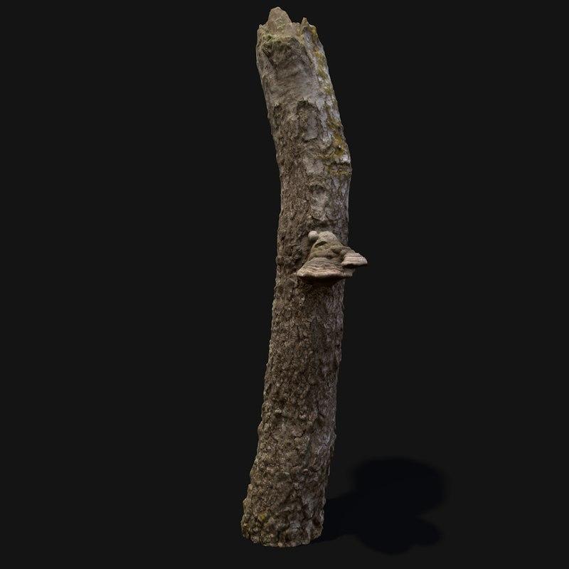 3d tree stump mushroom model