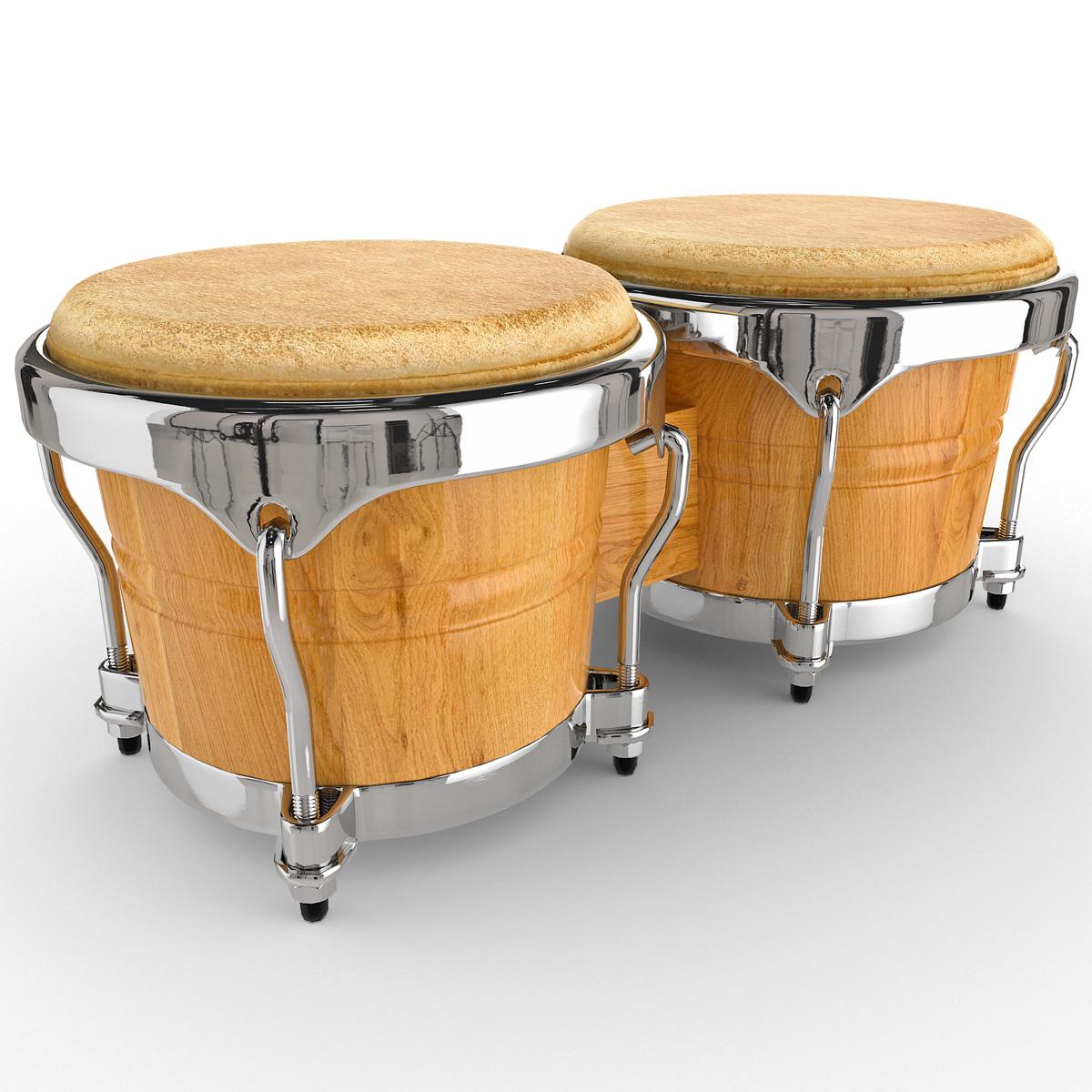 3d max bongo