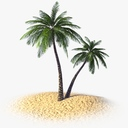 coconut palm 3D models