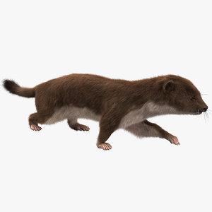 3dsmax weasel pose 1 fur