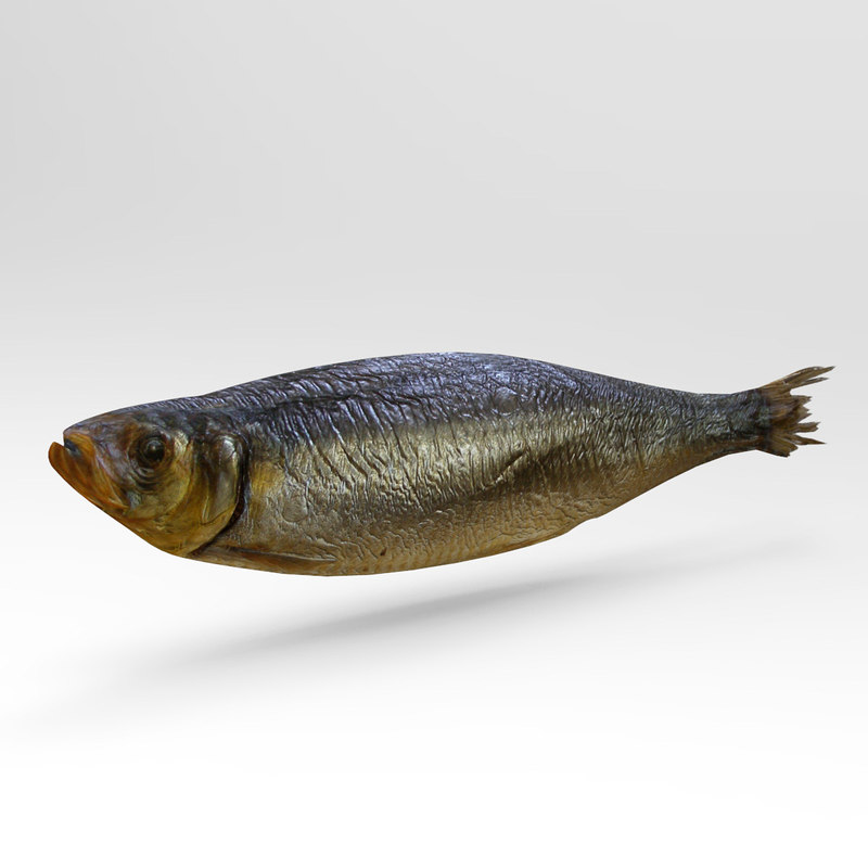 herring 3ds