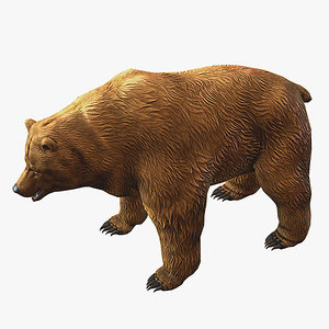 3d brown bear model