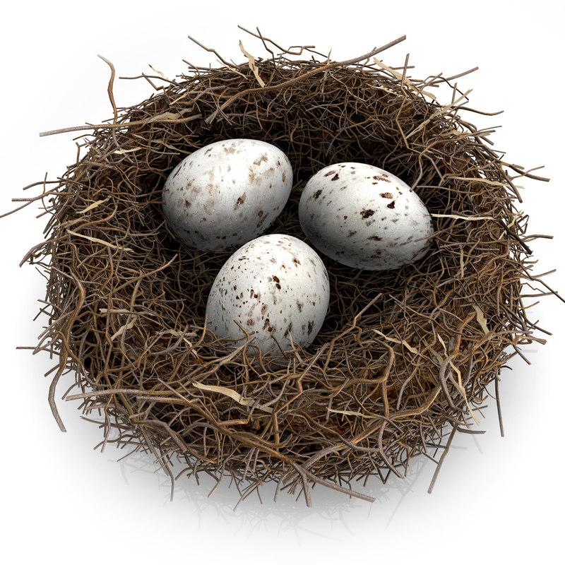 bird´s-nest modeled egg c4d