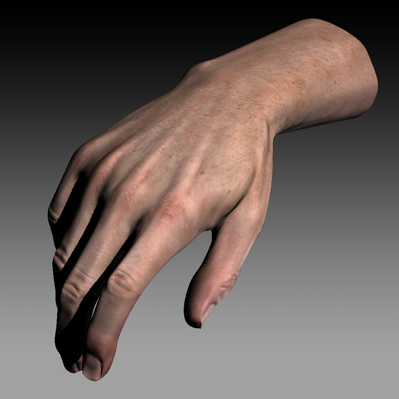 hand quad high-res 3d model
