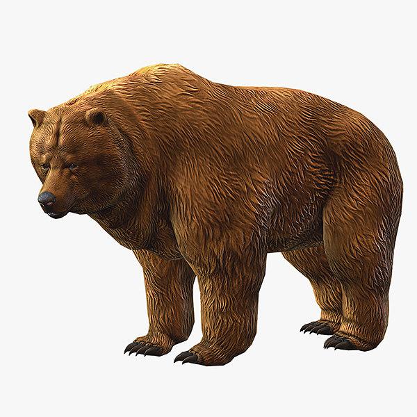 max brown bear animation