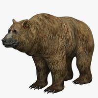 3d model hand bear fur