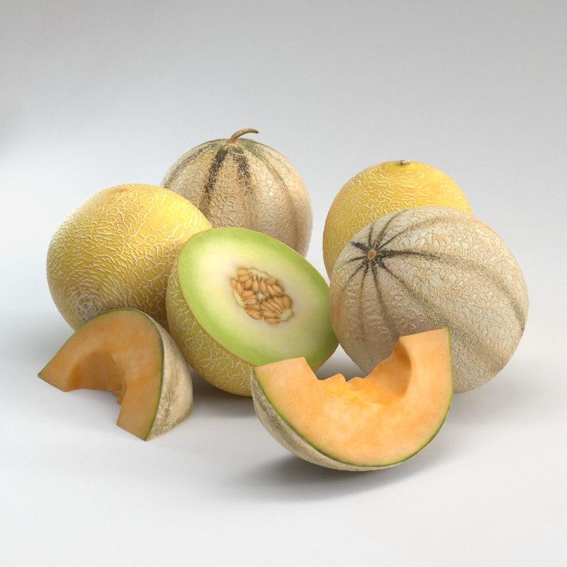 3d melons model