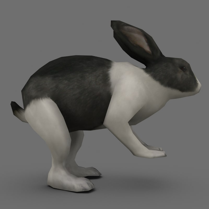 rabbit polygons 3d model