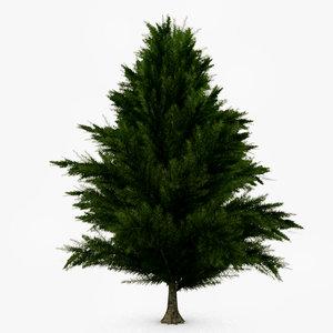 3d realtime pine tree -