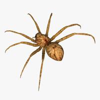 spider 3d 3ds