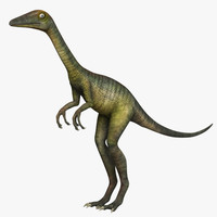 Troodon Formosus