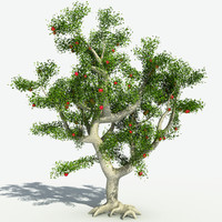 realistic apple tree 3d model