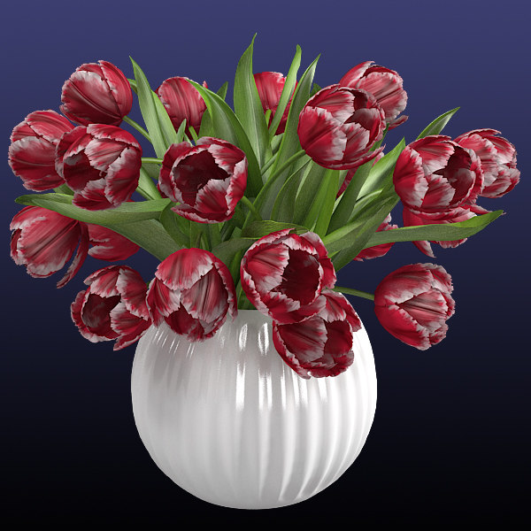 3ds max red tulips vase