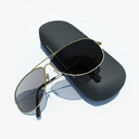 glasses case 3D models