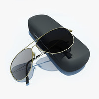 sunglasses case 3d fbx