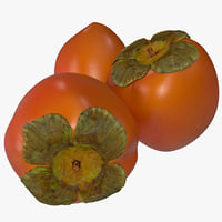 3d model of persimmon 2