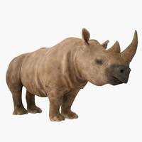 realistic rhino 3d 3ds