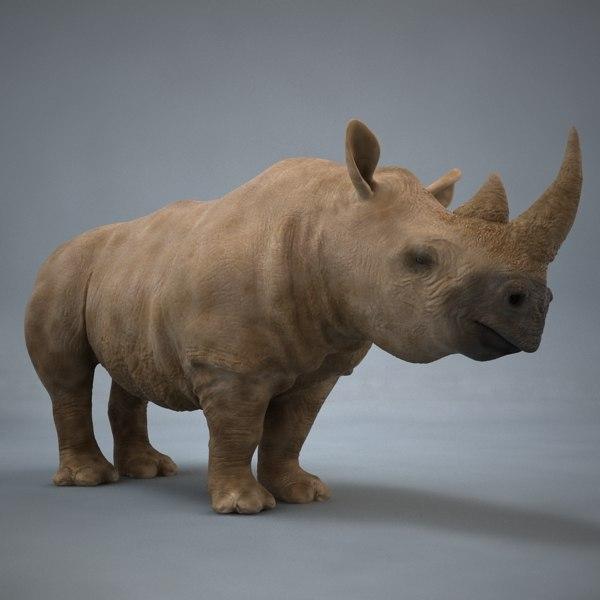 realistic rhino 3d 3ds