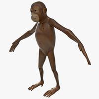 3dsmax orangutan baby