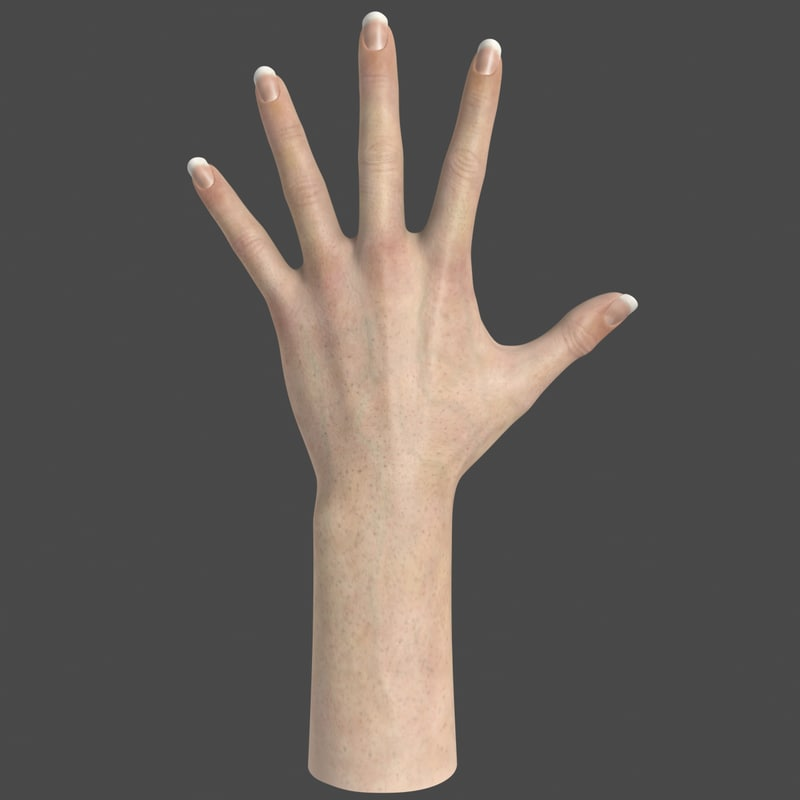 realistic female hand 3d max